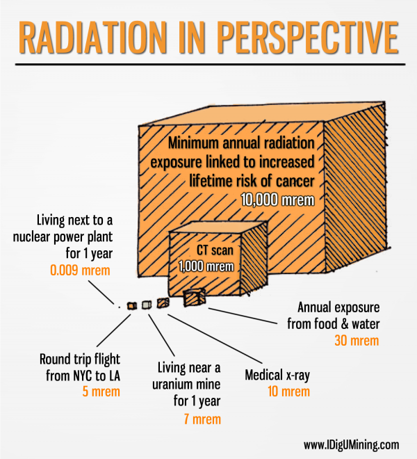 Radiation-in-Perspective.fw_-600x660[1]